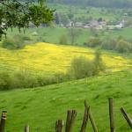 Vakantie Belgische Ardennen