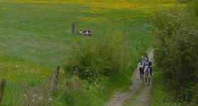 Actief in de Ardennen