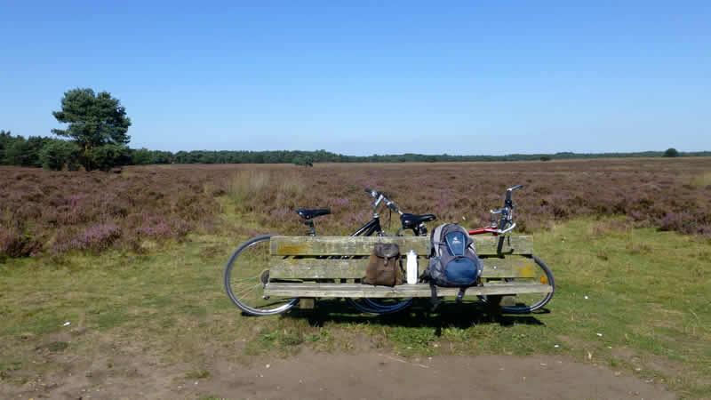 Actieve vakantie op de Veluwe bij Landal
