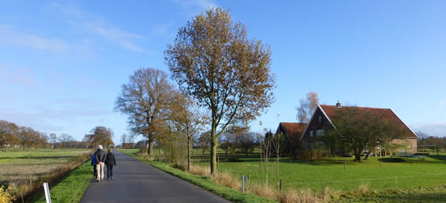 Vakantie in Gelderland