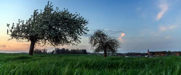 Vakantie in Noord-Brabant en tips voor trips