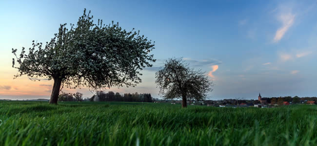 Vakantie in Noord-Brabant