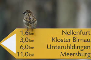 Wandelvakanties van SNP Natuurreizen