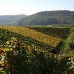 Herfst en feest in Baden-Wurttemberg