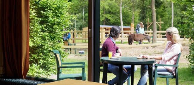 Ponyvakantie Center Parcs Eperheide