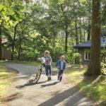 Landal Heideheuvel: paradijs voor de natuurliefhebber