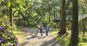 Tips, aanbiedingen en korting Landal Heideheuvel