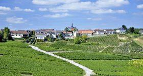 Tips vakantie in Champagne-Ardenne