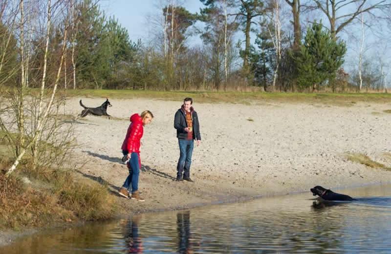 Met de hond naar Landal Drenthe
