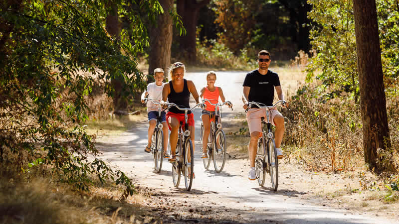Veel mogelijkheden op RCN Vakantiepark Het Grote Bos