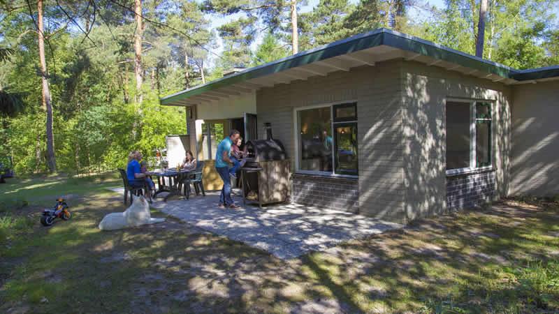 Vakantiehuizen en lodges op RCN vakantiepark de Noordster