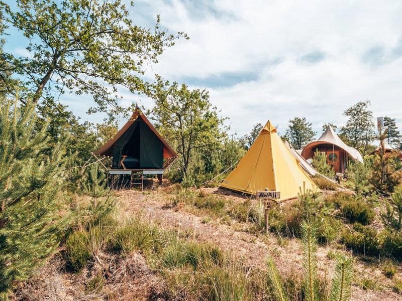 pop-up camping Nederland
