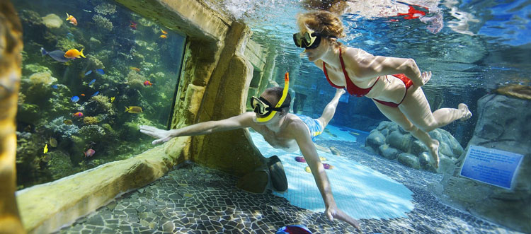 zwemmen bij Center Parcs
